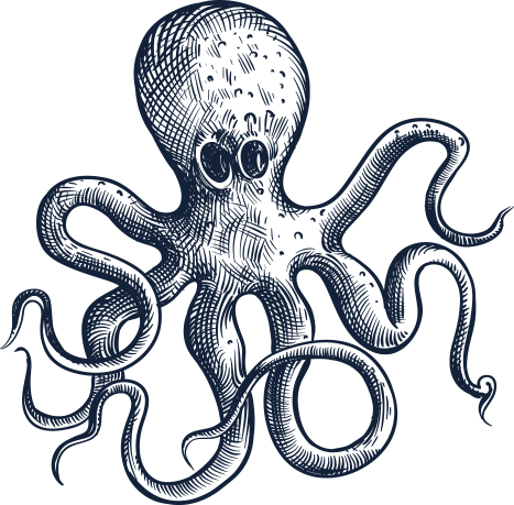 octopus sketch maximator - Amsterdam beer